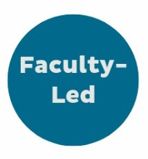 Faculty-Led